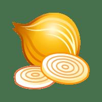 Icon Zwiebel